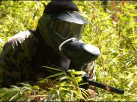 Paintballers may good hide in large bush.